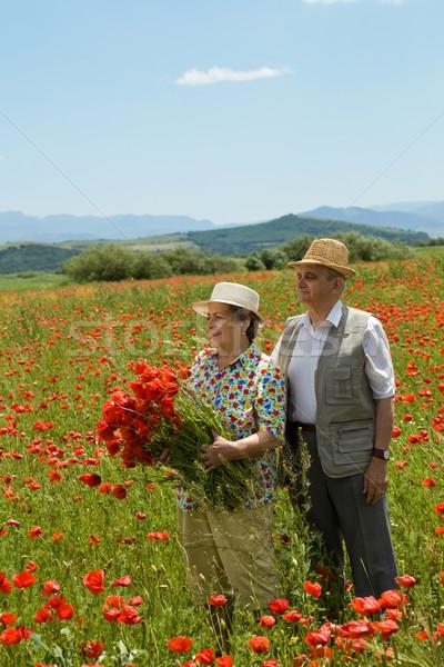 Boldog idős pár szőlőszüret virágok élvezi nyár Stock fotó © lightkeeper