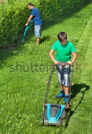 Boy mowing the lawn while his father is trimming the hedge Stock photo © lightkeeper