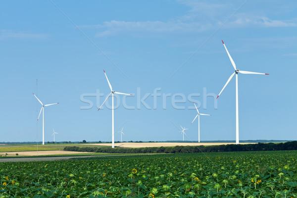 Szélturbinák napraforgó mező búza mezők nyár Stock fotó © lightkeeper