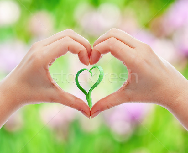 Love and protect nature and life Stock photo © lightkeeper