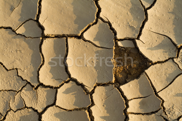 Droogte puzzel vermist stuk mooie regendruppel Stockfoto © lightkeeper