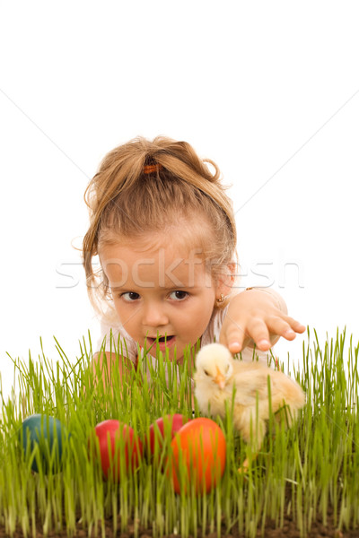 Little girl catching the Easter chicken Stock photo © lightkeeper