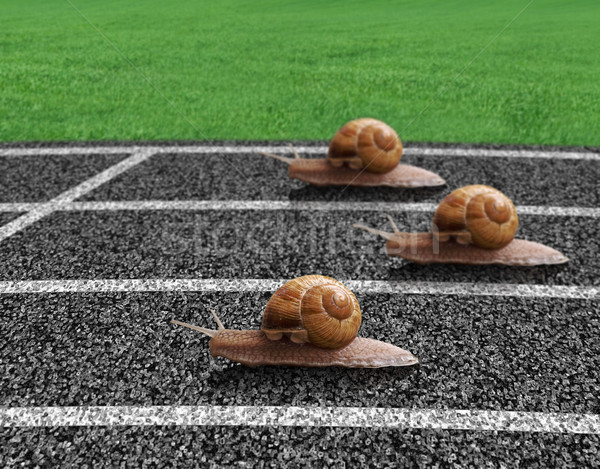 Stock photo: Snails race on sports track