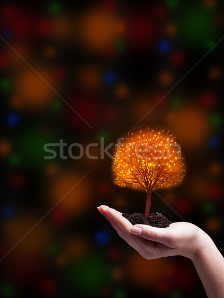 Keep the christmas magic alive Stock photo © lightkeeper