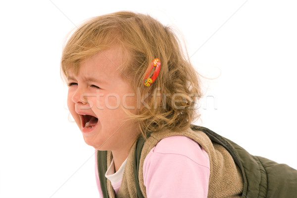Desperately crying toddler Stock photo © lightkeeper