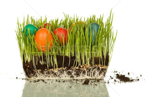 Easter symbols Stock photo © lightkeeper