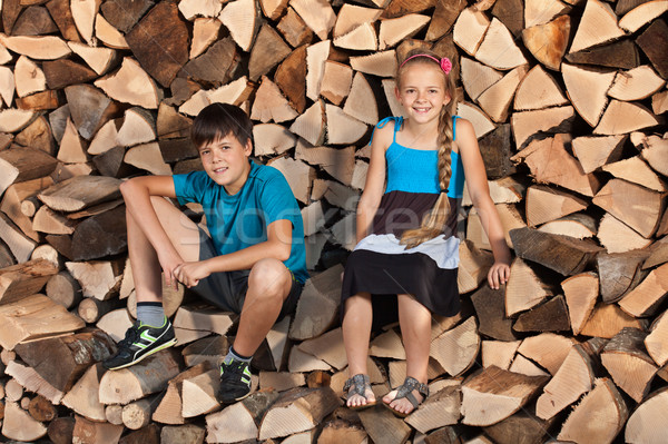 Kids sitting on stack of firewood Stock photo © lightkeeper