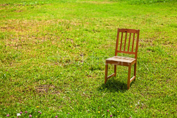 Solitude président herbe lumineuses lumière du soleil bois Photo stock © lightkeeper