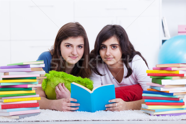 Tutoring concept - girls learning together Stock photo © lightkeeper