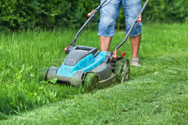 Man cutting the grass with a lawn mower Stock photo © lightkeeper
