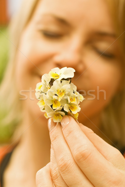 Wildflowers bouquet in woman hand Stock photo © lightkeeper