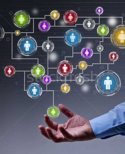Social networking in business Stock photo © lightkeeper