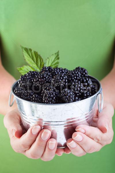 Juicy blackberries in woman hands Stock photo © lightkeeper