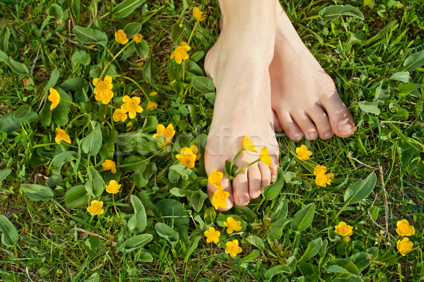 Woman resting her feet in the fresh spring vegetation Stock photo © lightkeeper