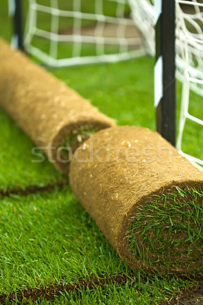 Gazon herbe terrain de football texture jardin Photo stock © lightkeeper