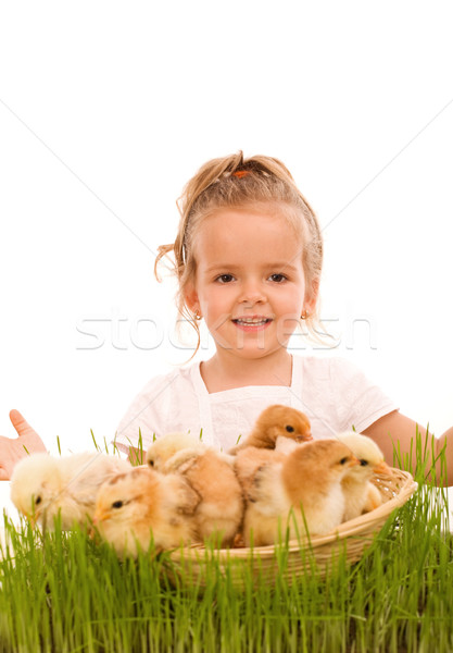 Happy spring girl with a basketful of little easter chicks Stock photo © lightkeeper