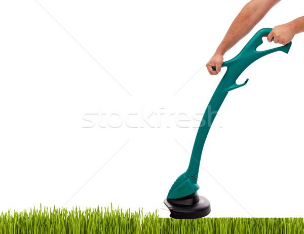 草 男性 手 芝刈り機 孤立した コピースペース ストックフォト © lightkeeper