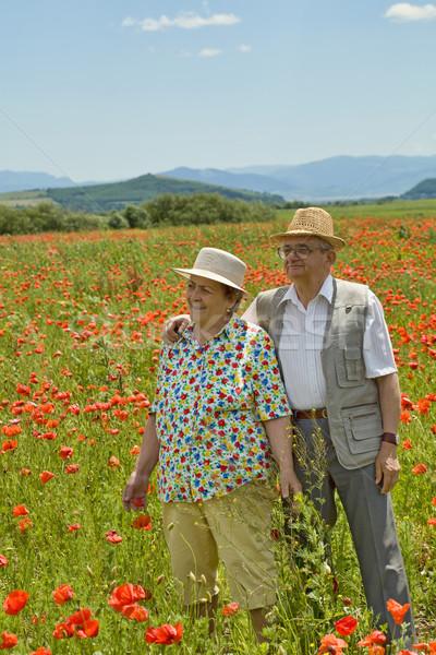 Senior couple on poppy field in early summer Stock photo © lightkeeper