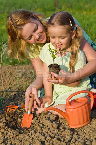 Woman and little girl growing healthy food Stock photo © lightkeeper