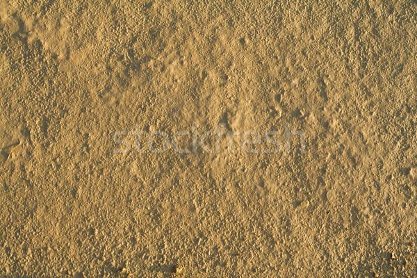 Fine grained dry mud Stock photo © lightkeeper