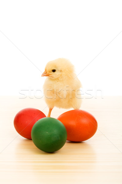 Easter baby chicken with colorful eggs Stock photo © lightkeeper