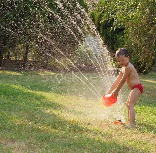 Water sprinkler fun Stock photo © lightkeeper