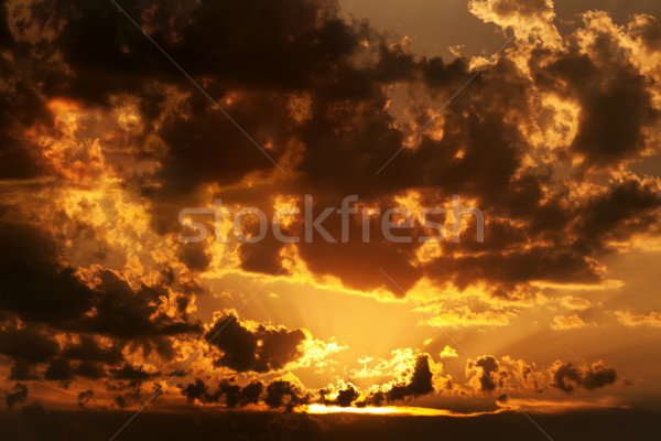 Dramatic sunset Stock photo © lightkeeper