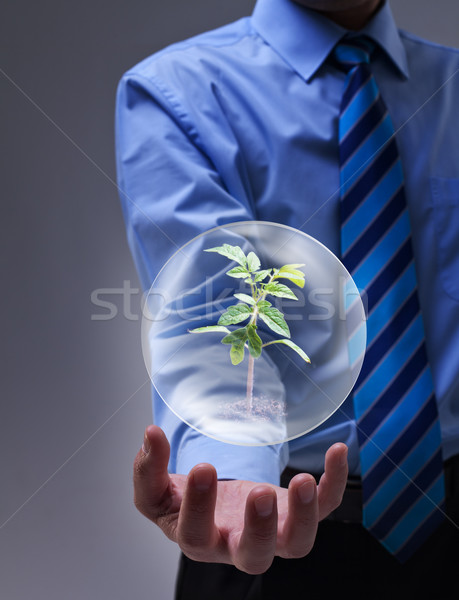 Magical solution to the environmental issue Stock photo © lightkeeper