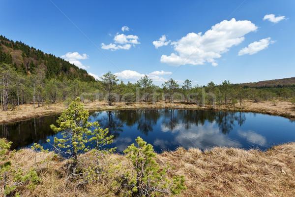 Wulkaniczny pochodzenie rezerwacja wcześnie wiosną Zdjęcia stock © lightkeeper