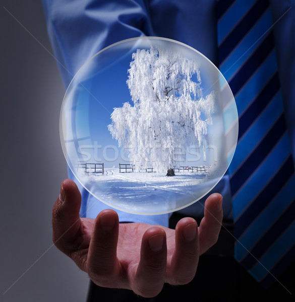 Winter holidays offer in businessman hands Stock photo © lightkeeper