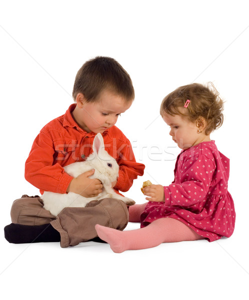 Two children feeding a bunny Stock photo © lightkeeper