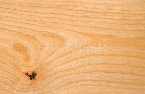 Beech wood texture Stock photo © lightkeeper