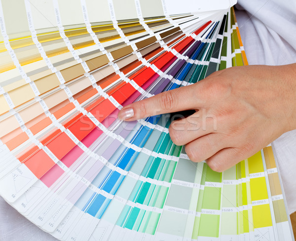 Picking the right color Stock photo © lightkeeper