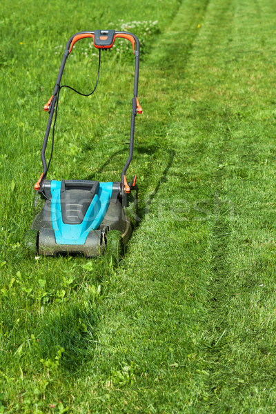 Freshly cut grass strips and blue lawnmower Stock photo © lightkeeper