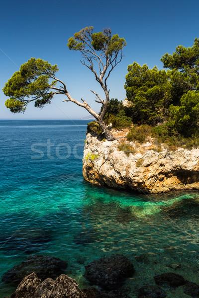 Splendid seacoast of Croatia (Makarska riviera, Brela) Stock photo © lightpoet