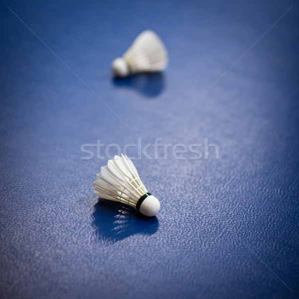 Stock photo: badminton - badminton courts with two shuttlecocks
