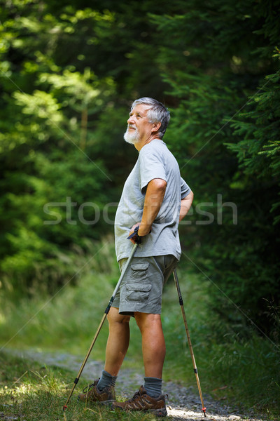 Ativo senior caminhadas alto montanhas Foto stock © lightpoet