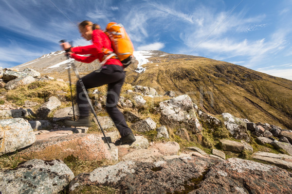 Pretty, young female hiker going uphill Stock photo © lightpoet