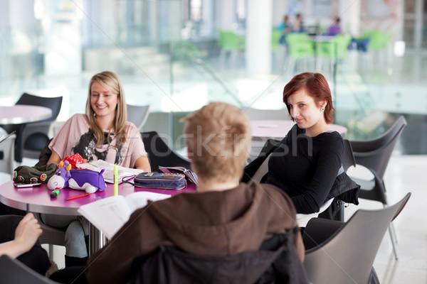Stock fotó: Csoport · diákok · fék · beszélget · jegyzetek · szórakozás
