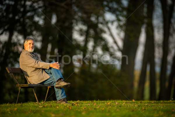 Portrait of a senior man outdoors, sitting on a bench in a park  Stock photo © lightpoet