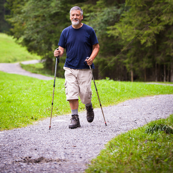 active handsome senior man nordic walking outdoors  Stock photo © lightpoet