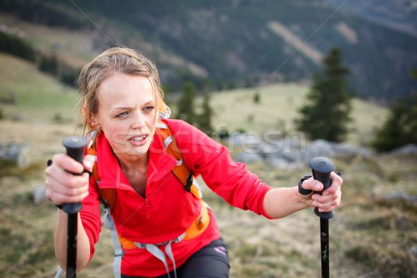 довольно молодые женщины турист жесткий ходьбы Сток-фото © lightpoet