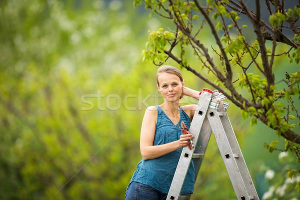 Pretty, young woman gardening in her orchard/garden Stock photo © lightpoet