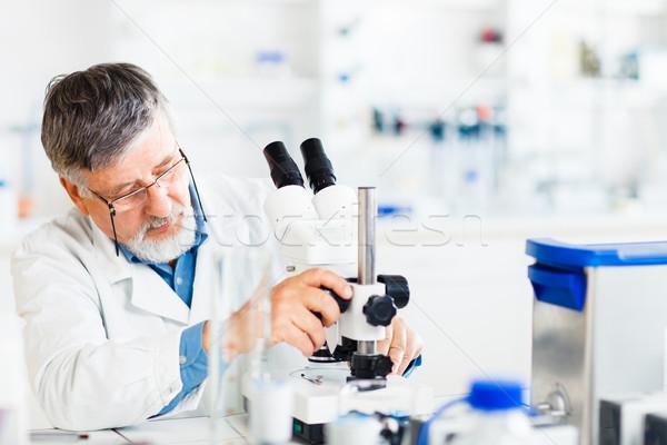 Stok fotoğraf: Kıdemli · erkek · araştırmacı · dışarı · bilimsel · araştırma