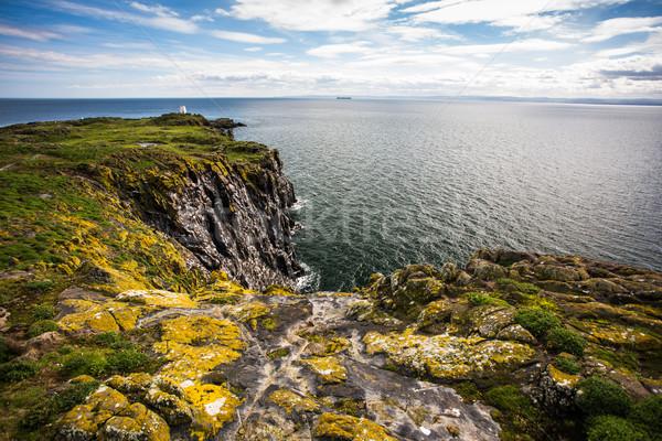 Escócia natureza paisagem mar ciência aves Foto stock © lightpoet