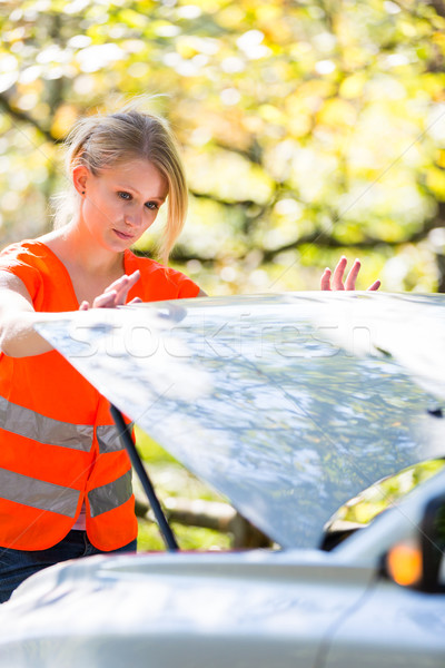 Young female driver wearing a high visibility vest on the roadsi Stock photo © lightpoet