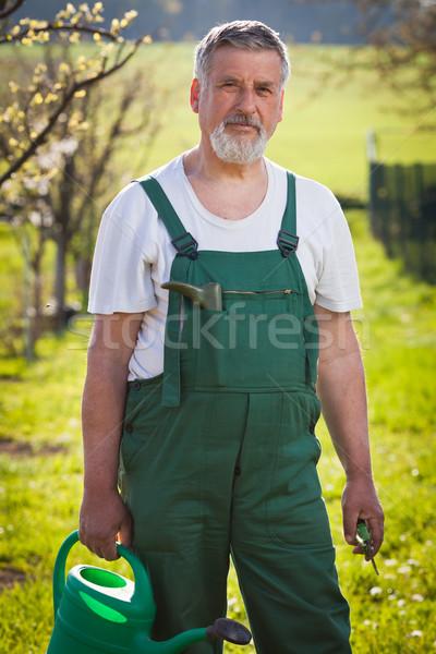 портрет старший садовник цвета цветок рук Сток-фото © lightpoet