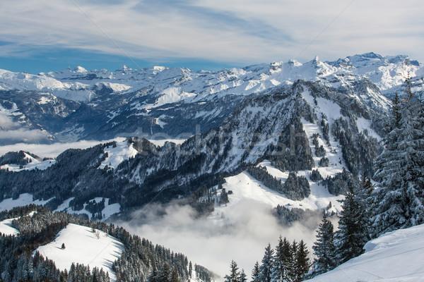 Winter alpine landschap hoog bergen bomen Stockfoto © lightpoet