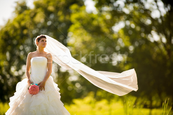 Gorgeous bride on her wedding day Stock photo © lightpoet