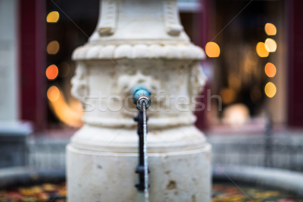 Güzel çeşme Zürih İsviçre sığ Stok fotoğraf © lightpoet